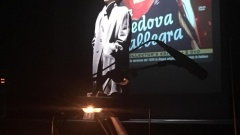 Blog–Louis Treumann-la sua Vedova